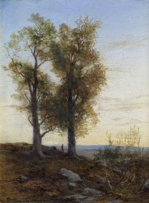 Grabiński Henryk, PEJZAŻ ROMANTYCZNY, 1887