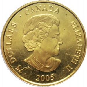 Kanada, Elżbieta II, 75 dolarów 2005, Jan Paweł II