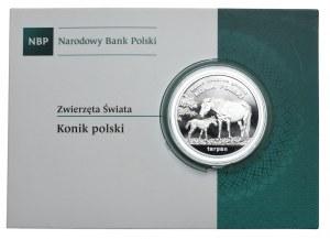 20 złotych 2014, Konik polski