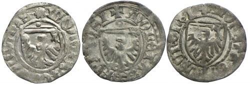 Kazimierz IV Jagiellończyk, 3x szeląg bez daty, Toruń