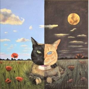 Adam Swoboda, Venus - dzień i noc