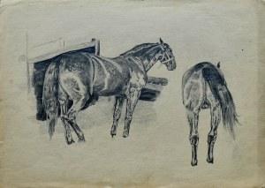 Ludwik Antoni Maciąg (1920-2007), Szkic konia w dwóch ujęciach
