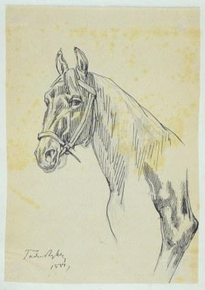 Tadeusz Rybkowski (1848-1926), Szkic głowy konia i fragment nogi konia, 1881 (?)