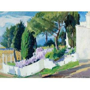 Stanisław Gałek (1876-1961), Capri