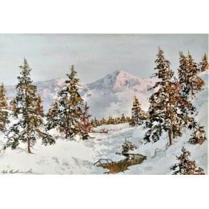Andrzej MALINOWSKI (1882-1932), Zima w górach