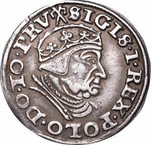 Zygmunt I Stary, Trojak 1540, Gdańsk