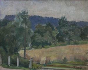 Bronisław Brykner (1884-1969) Fragment Żegocina