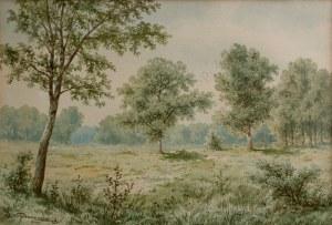 Józef Guranowski (1852-1922) Słoneczna polana