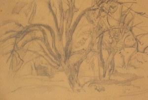 Jan Matejko (1838-1893) Drzewa w sadzie