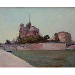 Włodzimierz Terlikowski (1873-1951) Widok na Ile de la Cité w Paryżu