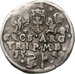 Zygmunt III Waza, trojak 1599, Wilno