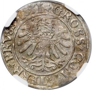 Zygmunt I Stary, grosz pruski 1531, Toruń