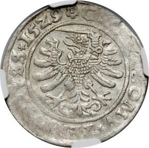 Zygmunt I Stary, grosz pruski 1529, Toruń