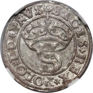 Zygmunt I Stary, szeląg pruski, 1529, Toruń