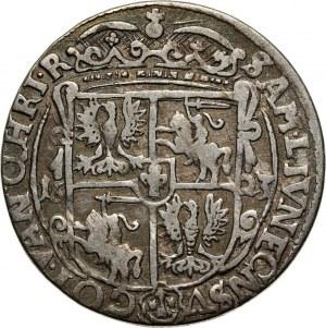 Zygmunt III Waza, ort 1623, Bydgoszcz, kokardy