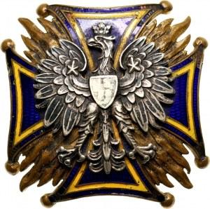 II RP, odznaka, 13 Pułk Piechoty