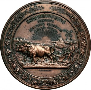 Russia, Alexander II, medal ND (1878) of the Imperial Society of Agriculture of Southern Russia