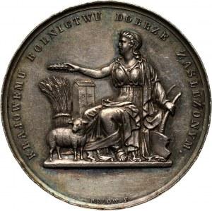 XIX wiek, Toruń, medal z 1874 roku, Wystawa Rolnicza i Przemysłowa w Toruniu