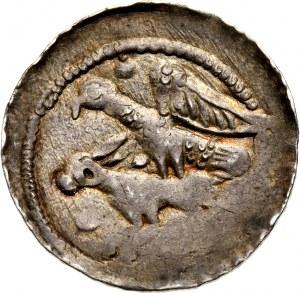Władysław II Wygnaniec 1138-1146, denar, orzeł chwytający zająca