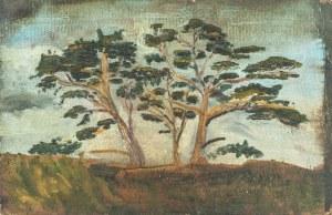 Franciszek Roman Rutkowski (1892 - 1940), Studium drzew, ok. 1915 r.