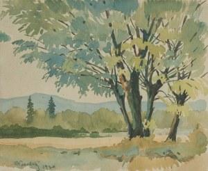 Artysta Nierozpoznany -, Pejzaż z Podhala, 1930