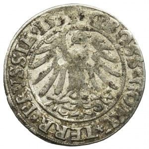 Sigismund I the Old, Groschen Thorun 1535