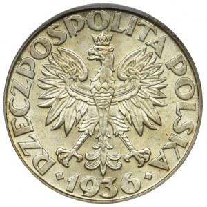 Żaglowiec, 2 złote 1936 - ECC MS63