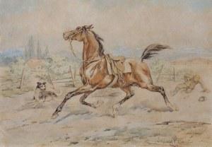 Kossak Juliusz, SPŁOSZONY WIERZCHOWIEC, 1893