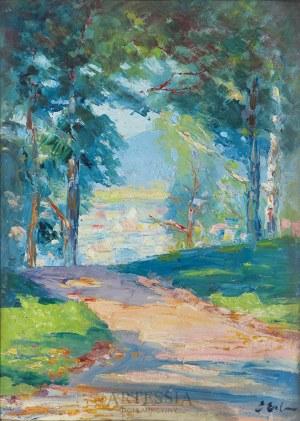 Erno Erb (1878-1943), Widok z wysokiego zamku we Lwowie, lata 20. XX w.
