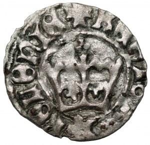 Jan I Olbracht (1492–1501) - Półgrosz koronny