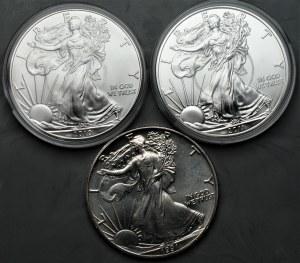 USA - zestaw 3 sztuk monet uncjowych - 1 dolar (1991-2011)