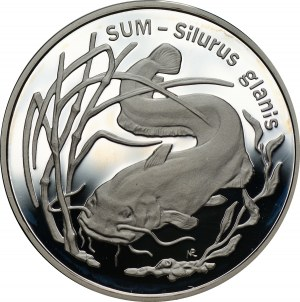 20 złotych 1995 - Sum - Ag 925