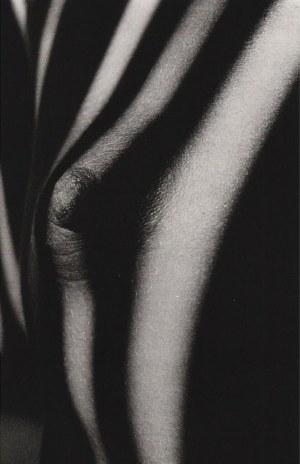 Jeanloup SIEFF (1933 - 2000), Breast in the Sunlight, 1970