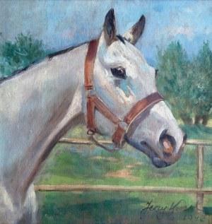 Jerzy Kossak (1886 Kraków - 1955 tamże), Głowa konia, 1947 r.
