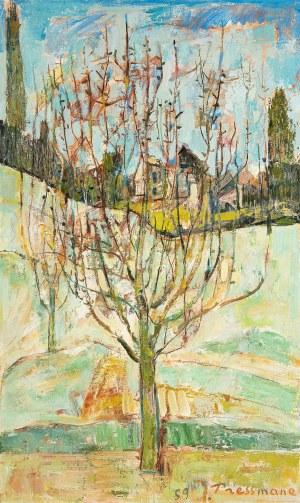 Joseph Pressmane (1904 Beresteczko- 1967 Paryż), Drzewo w moim ogrodzie w Villiers-le-Bel, 1959 r.