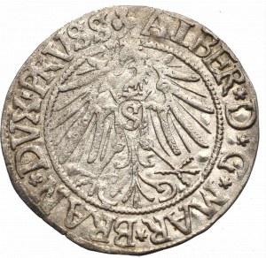 Germany, Preussen, Albrecht Hohenzollern, Groschen 1542, Konigsberg