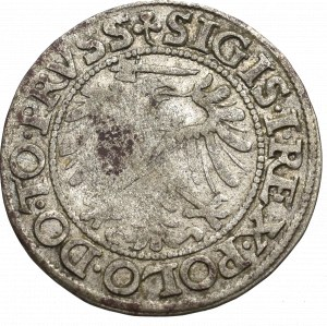 Sigismund I the Old, Groschen 1539, Elbing
