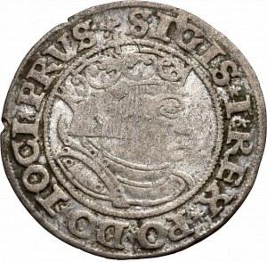 Zygmunt I Stary, Grosz dla ziem pruskich 1532, Toruń