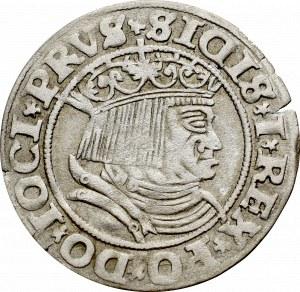 Zygmunt I Stary, Grosz dla ziem pruskich 1531, Toruń