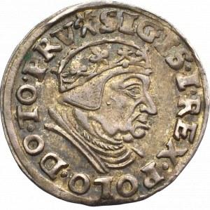 Sigismund I the Old, 3 groschen 1539, Danzig