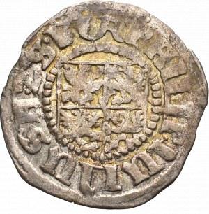 Pomorze, Filip Juliusz, grosz 1609, Franzburg