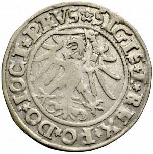 Sigismund I the Old, Groschen 1535, Elbing