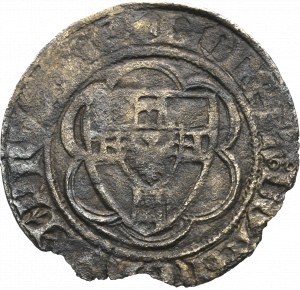 Zakon Krzyżacki, Winrych von Kniprode, Półskojec