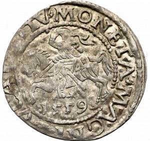 Zygmunt II August, Półgrosz 1559, Wilno - L/LITV