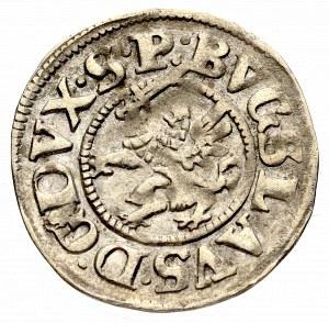 Pomorze, Księstwo Szczecińskie, Bogusław XIV, Szeląg podwójny 1621