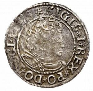 Zygmunt I Stary, Grosz dla ziem pruskich 1533, Toruń