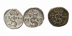 Zygmunt II August, Zestaw dwudenarów (3 sztuki)