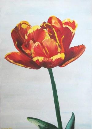 No Name, 90. Tulipan 41, 2019