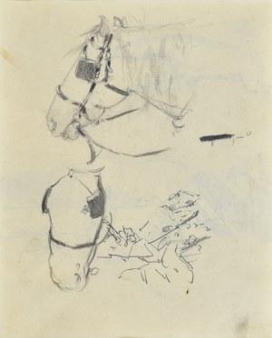 Stanisław Kamocki (1875-1944), Studia głowy konia w uprzęży, ok. 1900