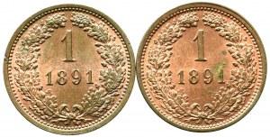 Austria, zestaw 1 krajcar 1891 (2 egzemplarze)